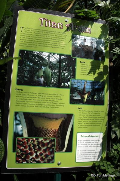 15 Niagara Parks Floral Showcase