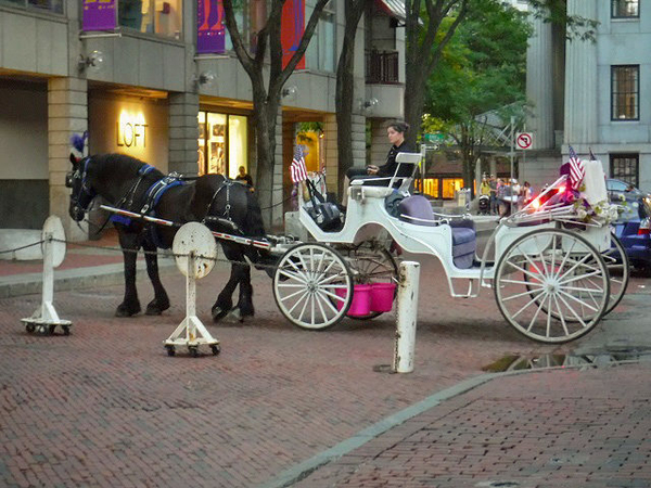 Faneuil-Hall-Horse-and-Buggy