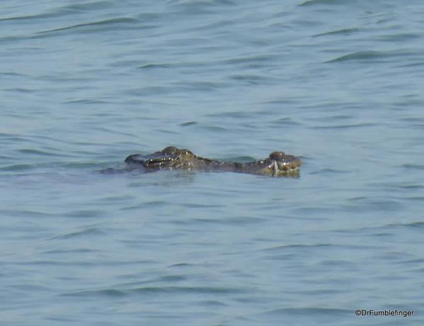 07 Batticaloa harbor