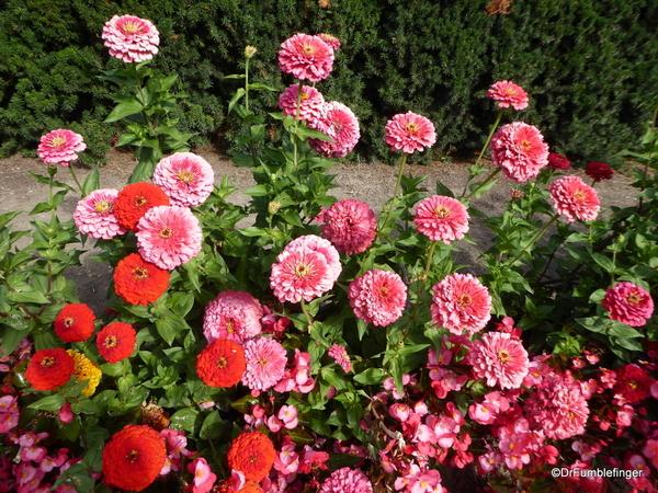 Duncan Garden (5)