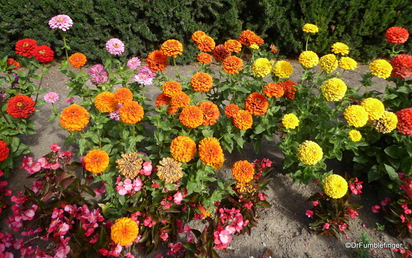 Duncan Garden (6)