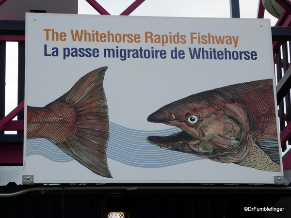 18 Signs of Whitehorse (20)