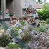Yard Art 1