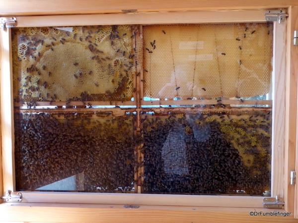 10 Radovljica Bee Keeping Museum (45)