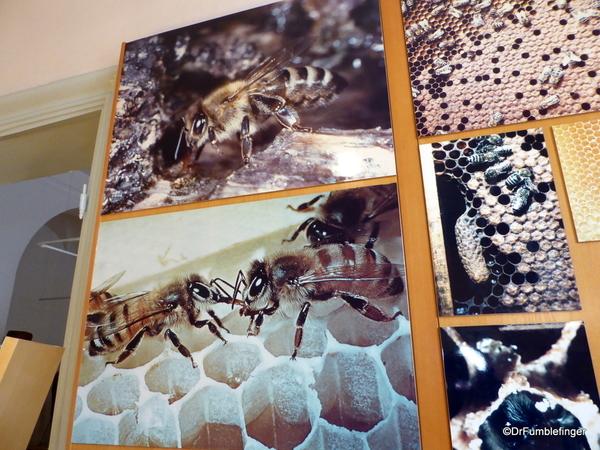 14 Radovljica Bee Keeping Museum (41)
