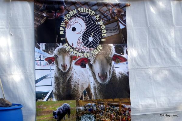 New York State Sheep and Wool Festival   TravelGumbo