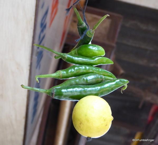 10 Chandi Chowk Market (25)