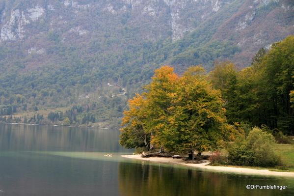 06 Lake Bohinj, Slovenia (7)