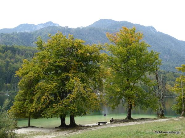 07a Lake Bohinj, Slovenia (30)