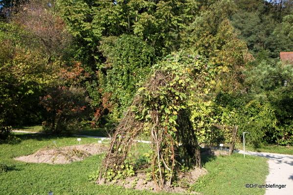 Ljubljana Botanical Garden (21)