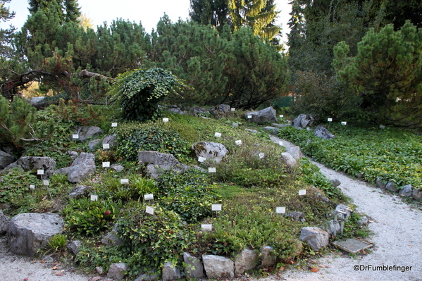 Ljubljana Botanical Garden (34)