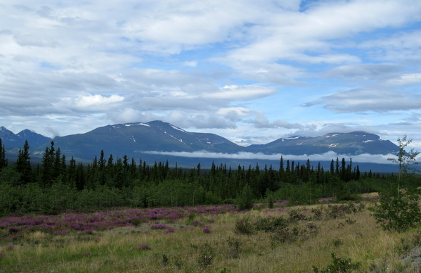 04b Trip to Kluane - Alaska Highway (5)