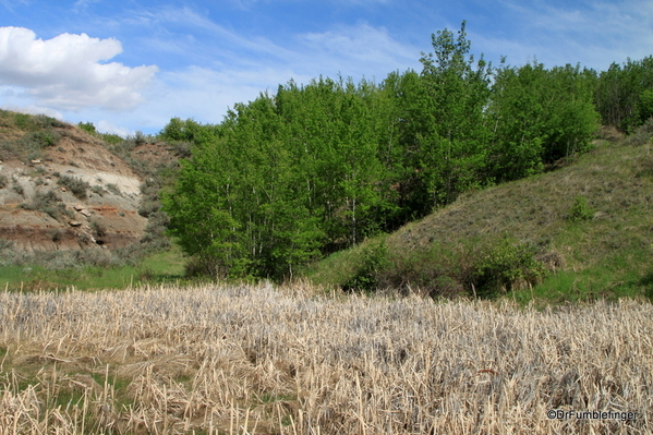14 Midland Provincial Park (29)