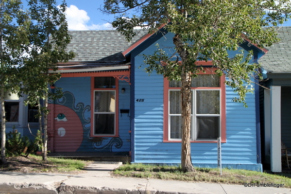15 Homes in Leadville