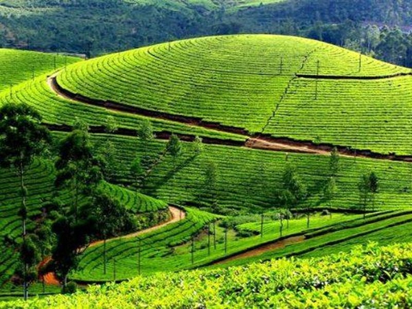 places-in-kerala