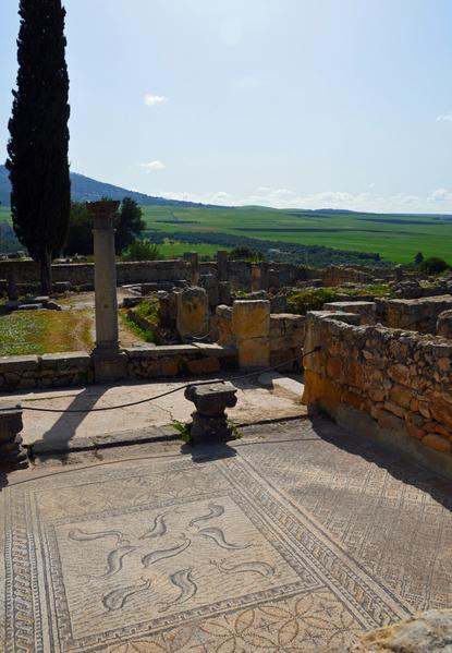 Roman site of Volubilis 2
