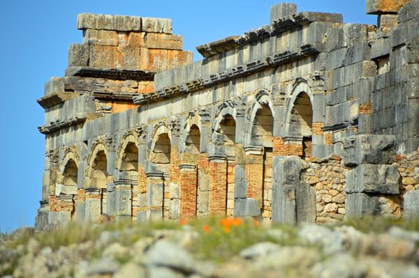Roman site of Volubilis 3