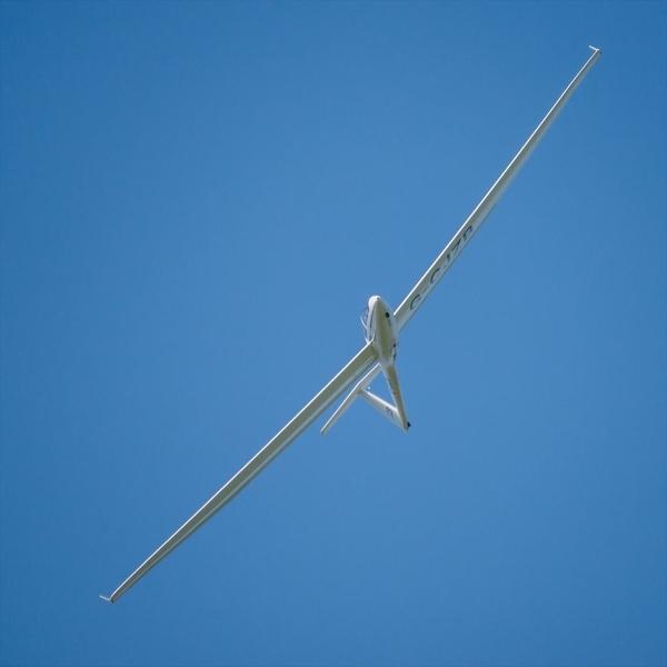 Glider 5