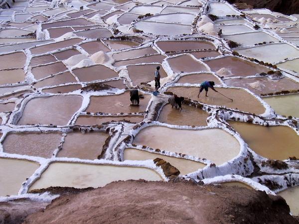 Maras salt pans (3)