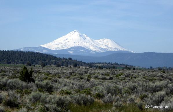 Mt. Shasta 03