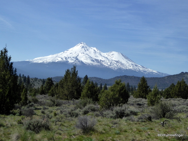 Mt. Shasta 11