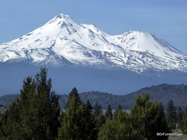 Mt. Shasta 16