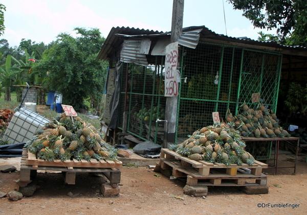 10 Roadside markets Trip to Nuwara Eliya, Sri Lanka (22)