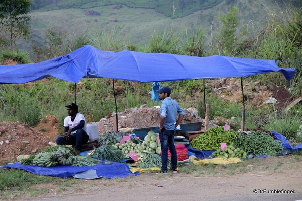 14 Roadside markets Trip to Nuwara Eliya, Sri Lanka (62)