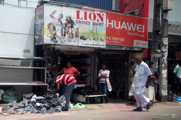 15 Trip to Nuwara Eliya, Sri Lanka (1)