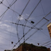 bologna streets 09