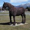 Rusty, Museum of the Rockies, Bozeman