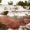 Colombia-CanoCristales-102