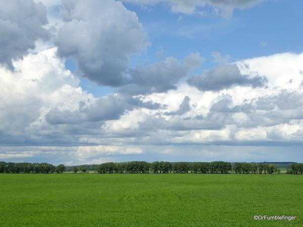 01 Rural Alberta