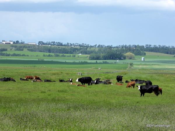 03 Rural Alberta