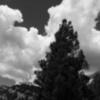 sandia sky 4