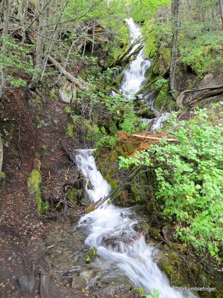 15 Ushuaia Train Ride