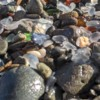Glass Beach: Glass Beach