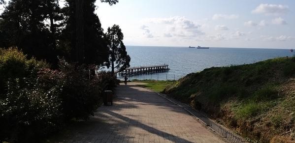 11 2019-10-27 Georgia Batumi Botanical Garden Mtirala National Park 65