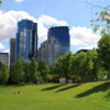 Views of downtown from Prince's Island Park, Calgary