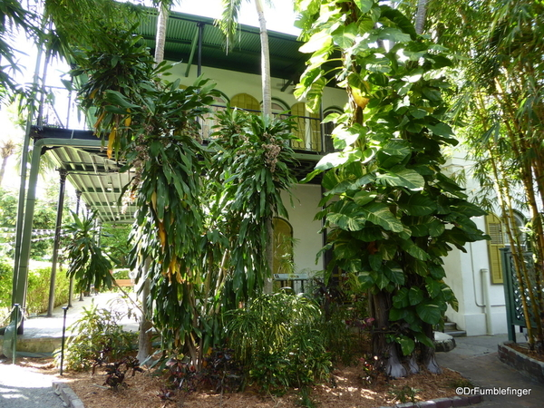 19a Hemingway House, Key West