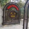01 Panna Tiger Reserve