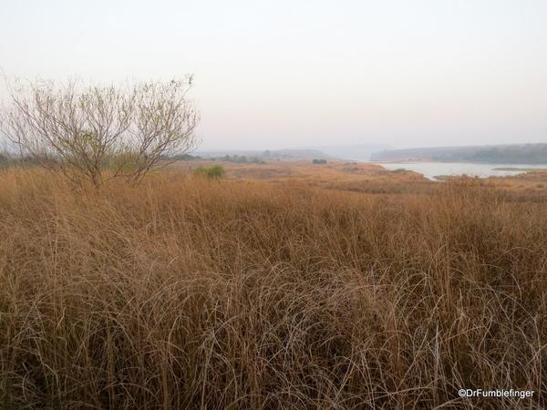 02 Panna Tiger Reserve (14)