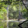 11 Panna Tiger Reserve  (5)