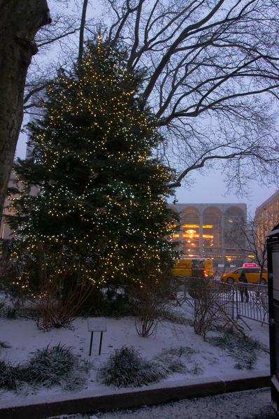 lincoln square tree