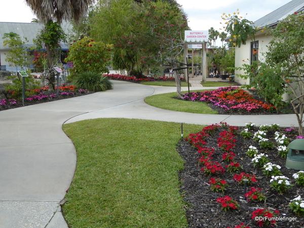 02a Butterfly World, Florida (111)