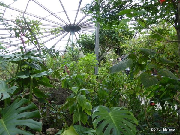 06 Butterfly World, Florida (46)