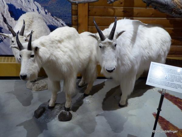 04 MacBride Museum, Whitehorse