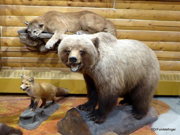 05 MacBride Museum, Whitehorse