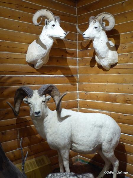 06 MacBride Museum, Whitehorse