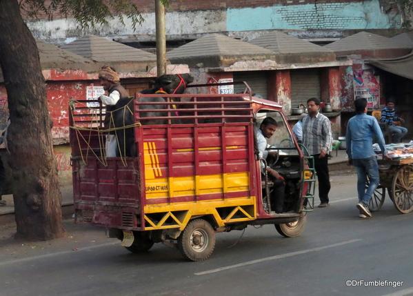 01 Agra Street Scenes